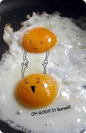 Isn't that sweet?! Is it the best eggxample of 'till death do us part?