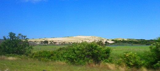 The familiar dunes of Cape Cod