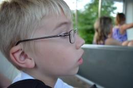 Looking at animals at the zoo