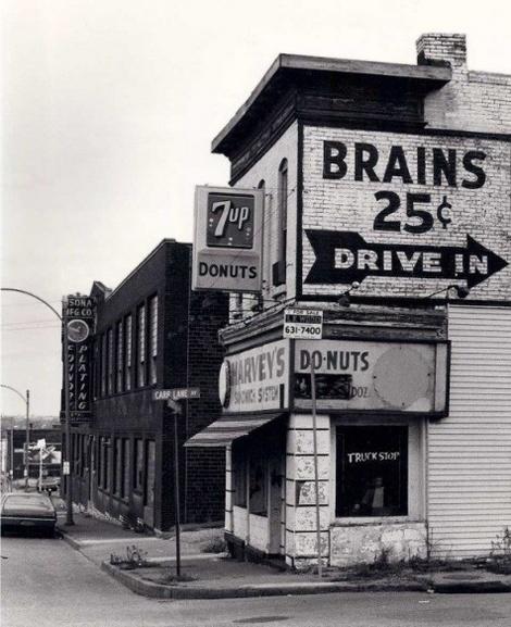 Politician Brains Cheap!
