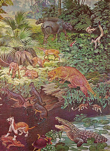 A depiction of the flora and fauna of North America during the Eocene.