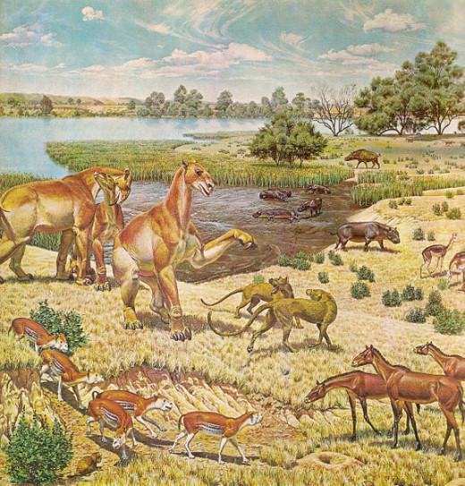 A  restoration of the Miocene fauna in North America.