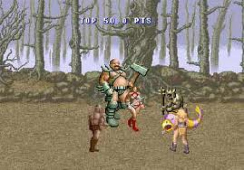 Golden Axe is a fighting video game released on arcade machines in the 1980's. It was also released for the Nintendo, Sega and Playstation home video game consoles.