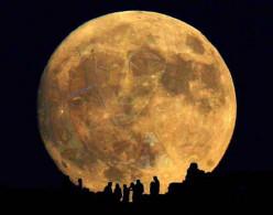 Harvested moon