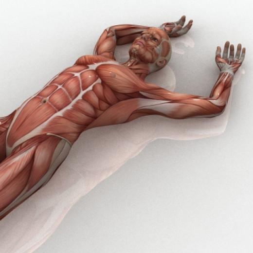 Progressive Muscular Relaxation