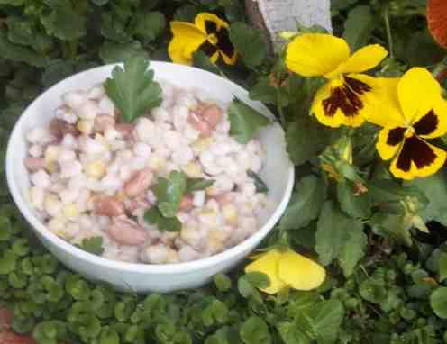 Samp and Bean dish