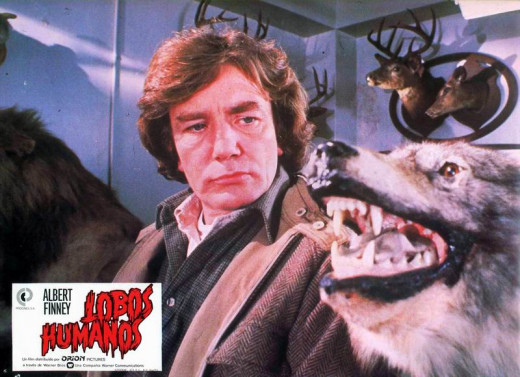 Albert Finney in Wolfen (1981) Lobby card