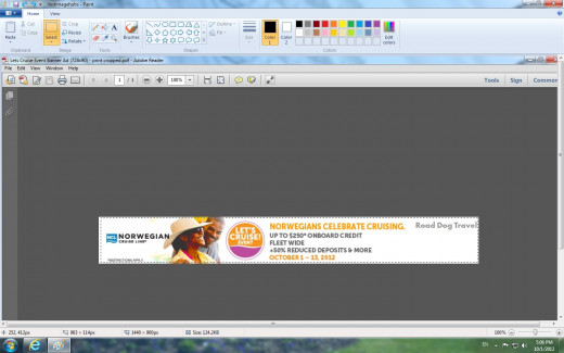 Screenshot of Paint while dragging a box around the PDF image I want to use in Blogger.