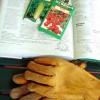 Best Gardening How-To Books