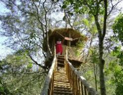 Thekkady....a wild life hill station