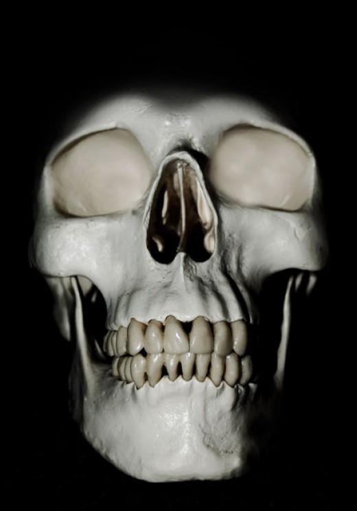 Halloween Skulls by Jiri Hodan