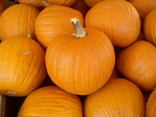 Yea! Pumpkins!