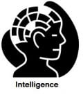 Different Types of Intelligence