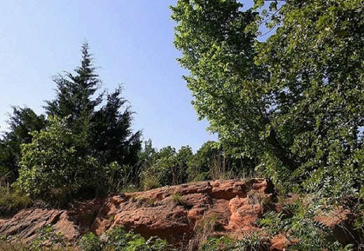 This sandstone outcrop is what pioneer covered wagons had to travel over and around.