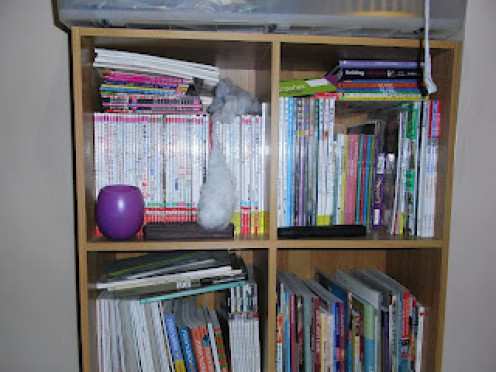 A snap shot of my multilingual books, collected from all over the world.
