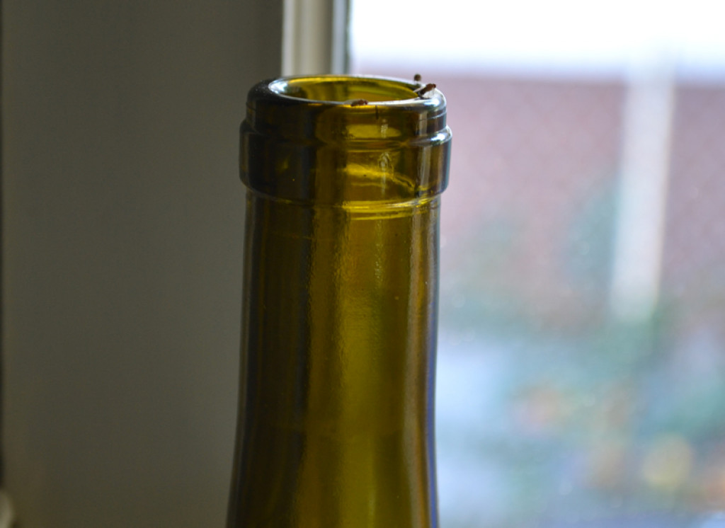 Fruit Fly Trap With A Wine Bottle