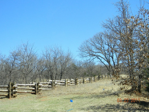 A rail fence, reminiscent of old-time fencing, but an attractive view toward blue skies.