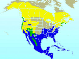 Yellow = summer only Blue = winter only Green = year-round