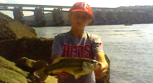 Early October Largemouth Bass are Active on the Ohio River