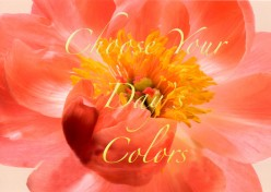 Choose Your Day's Colors