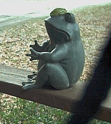 """Getting """"froggie""""..take a leap"""