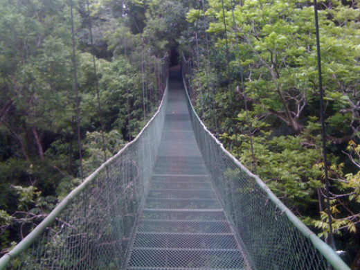 The hanging bridge going to the hot springs pool and restaurant at Vandara Hot Springs and Spa.
