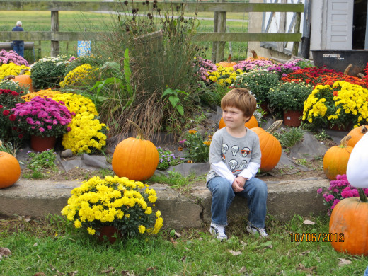 My grandson in an Autumn setting