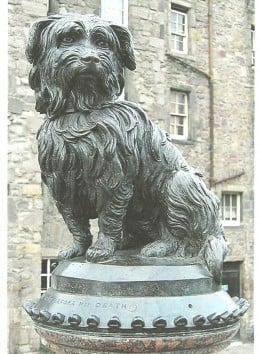 Renowned in Edinburgh, Scotland, the Skye Terrier Greyfriars Bobby stood guard over his deceased owner's grave for 14 years before he himself died in 1872.