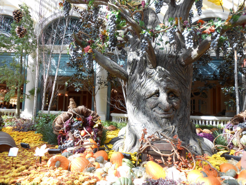 """Decorations at the Bellagio conservatory and botanical gardens change for the seasons. In fall 2012, this talking tree bellowed """"Welcome to Bellagio!"""" to passing visitors."""