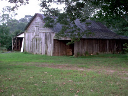 a barn's decaying wooden frame