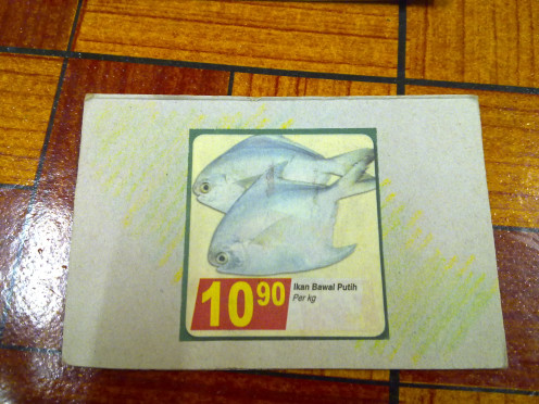 Picture of fishes on one flash card that I cut out from shopping brochures