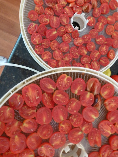 Tomatoes minus the water are a consentrated, intense rich tomato flavor.