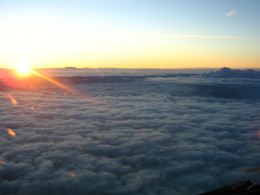 A pilot's eye view of the setting sun.