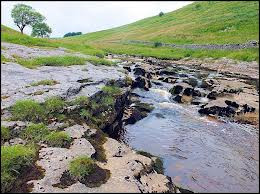 The infant River Wharfe in Langstrothdale with its   interesting water-carved stone shapes in the river and a plentiful supply of fish for the recently arrived otter population
