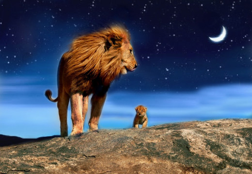 Simba and his little angel cub on a starry night.
