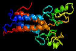 PDB Rendering of BRCA1 Gene