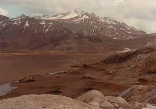 South of the ice, the landscape was dominated by barren, treeless tundra similar in appearance to the Arctic tundra of today.