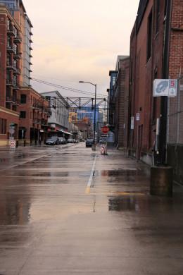After the rain in Portland, Oregon