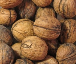 Organic walnuts - a favorite for large birds.