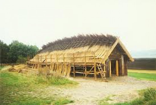 A hall in process of construction, thatch ready for adding to the roof