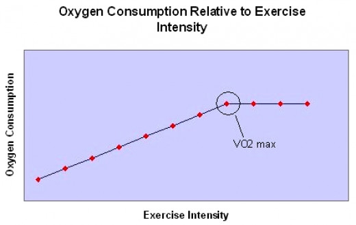 What is VO2 max ?
