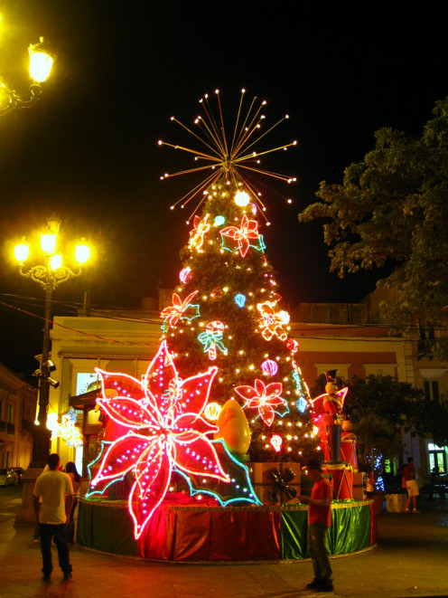 Christmas in the tropics is warm, lively, and fun!