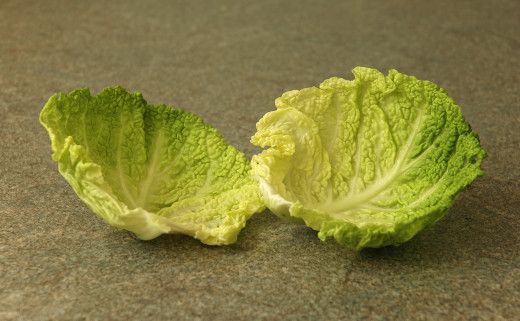 Use cabbage leaves (savoy works best, pictured here) to make a poultice to relieve the painful swelling of arthritic joints.