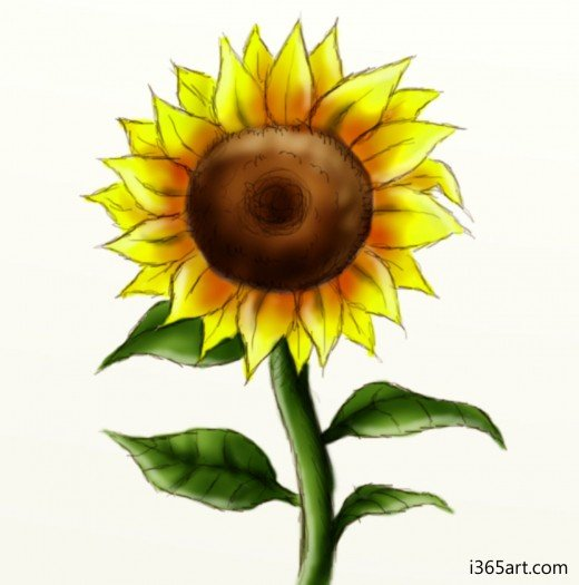 How to draw a sunflower feltmagnet