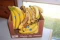 Eating 30 Bananas a Day: An Experiment