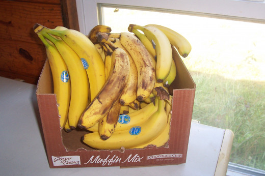 A box of bananas I bought the other day. Not organic (can't find organic here) and only cost 9 bucks for almost 20 pounds. 49-59 cent per pound here. Banana Island!