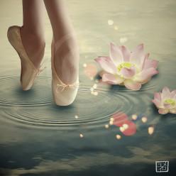 Ballerina Laces