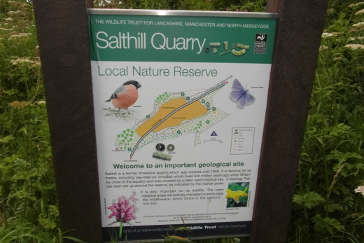 Salthill Quarry information board