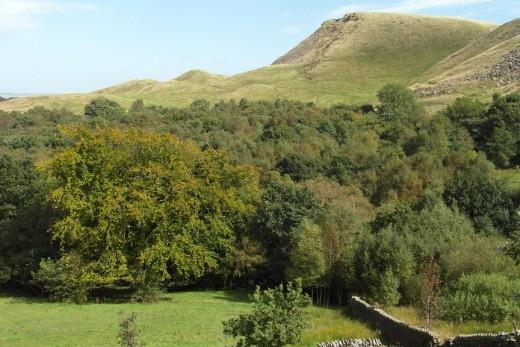 Hameldon Hill