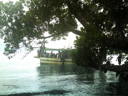 Here is our boat docking near a tree and unloading passengers before we get into town.